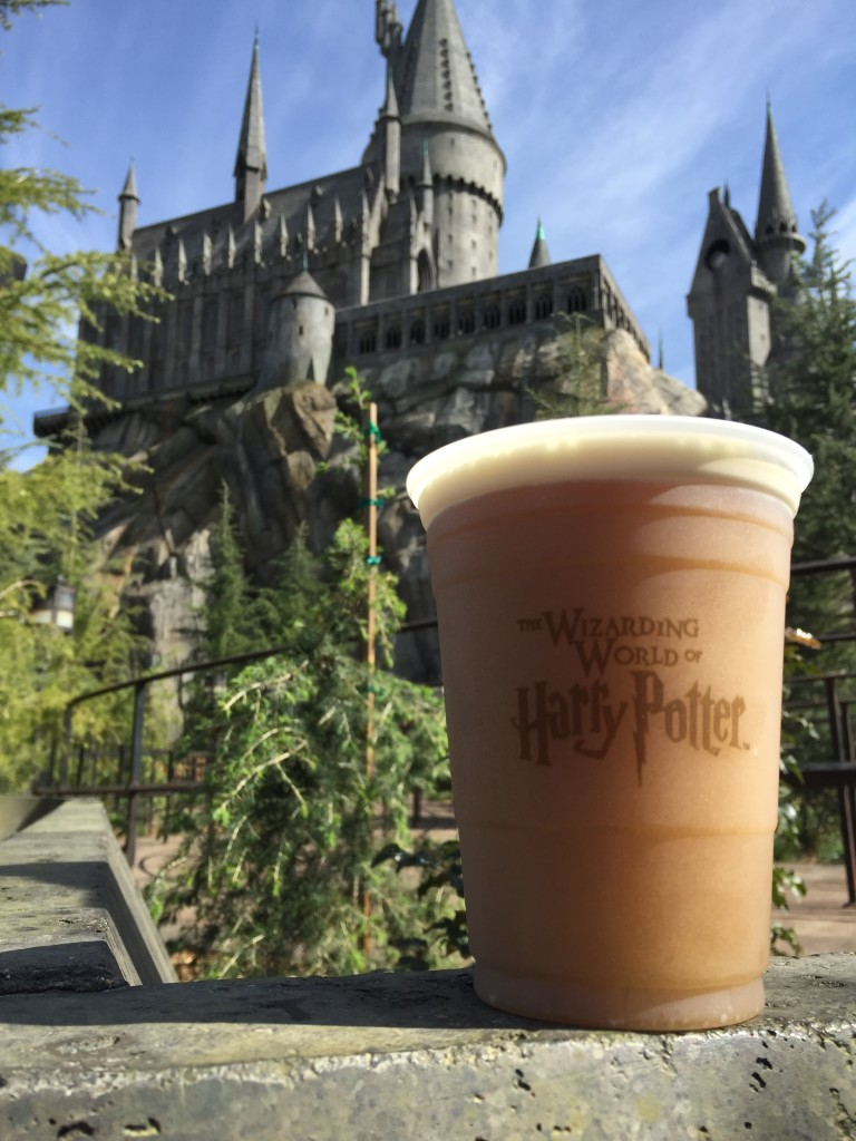 The Wizarding World of Harry Potter Hollywood