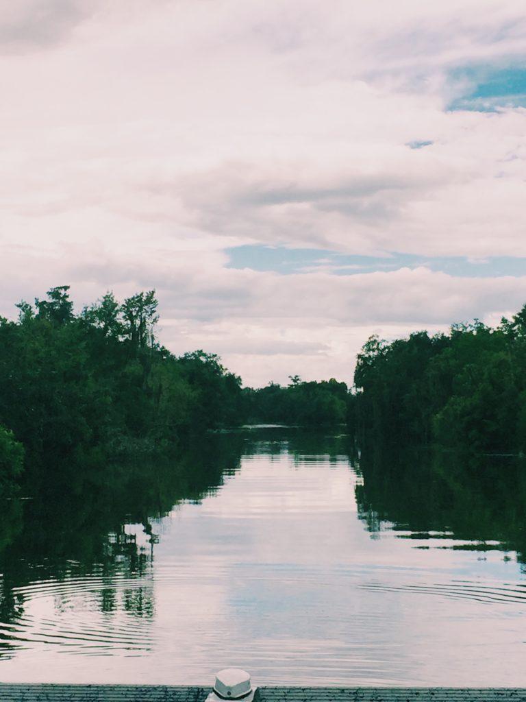 Airboat Adventures Swamp Tour